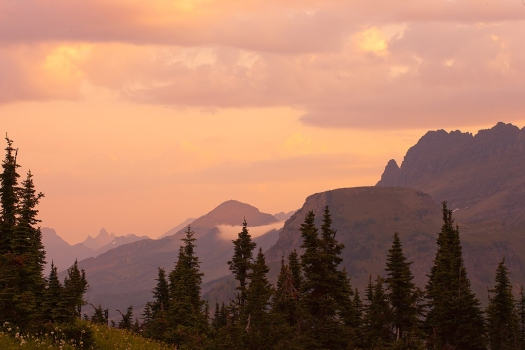 10080, Name removed-Soft,-foggy-dawn,-Logan-Pass,-Glacier-NP_W5P4229